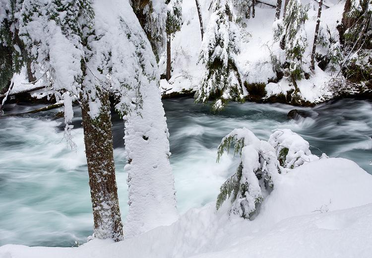 Mckenzie River Winter