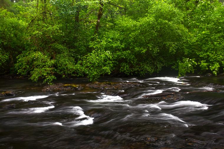 Silver Creek Oregon Photography By Skyler Hughes