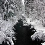 Salt Creek Winter