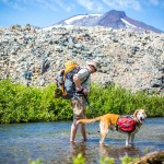 Backpacker With Dog