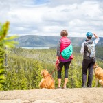 Dogs & Hikers at Paulina