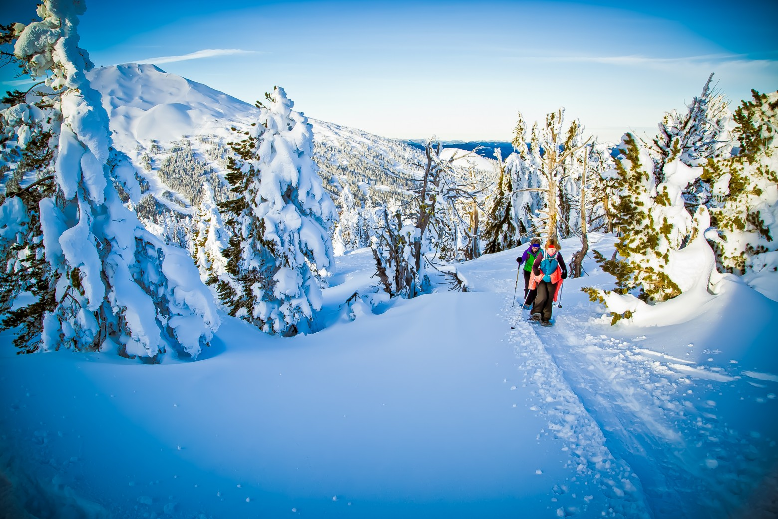 Tumalo Mountain Snowshoe