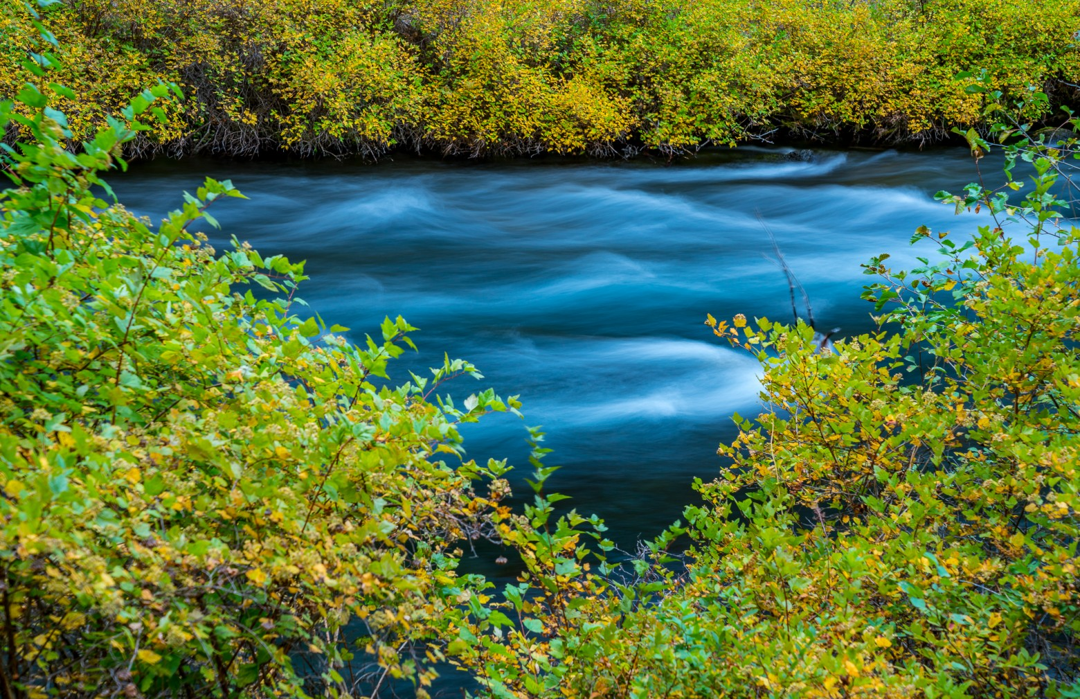 Autumn River Color Central Oregon