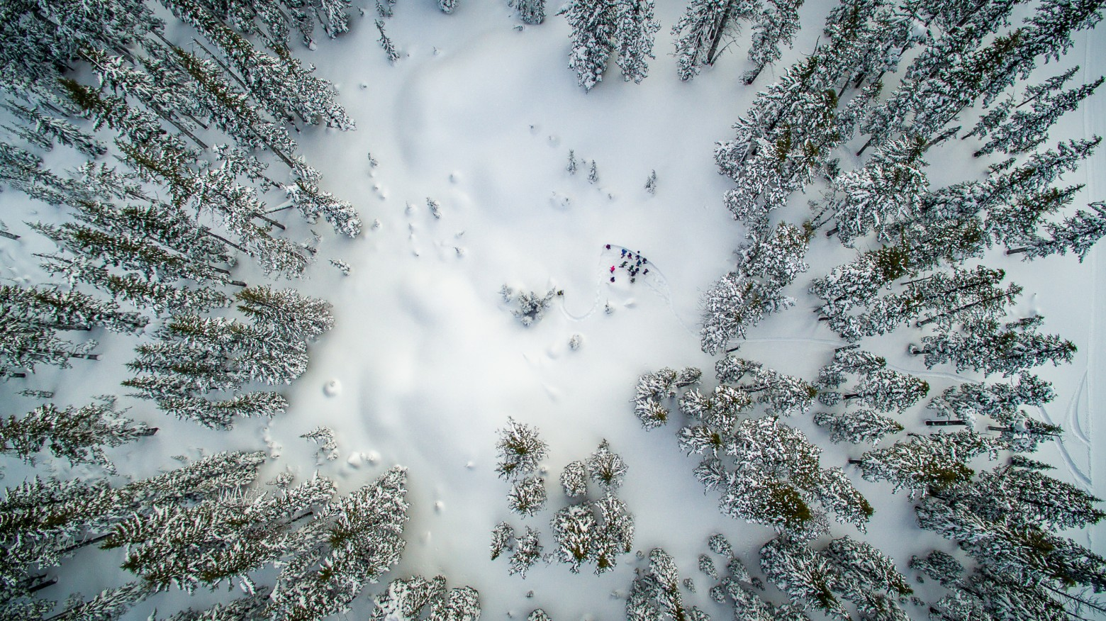 Snowshoe Bend Oregon Aerial Photography