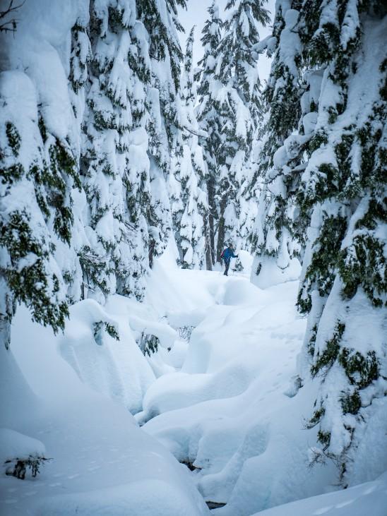 Todd Lake Bend Oregon XC skier