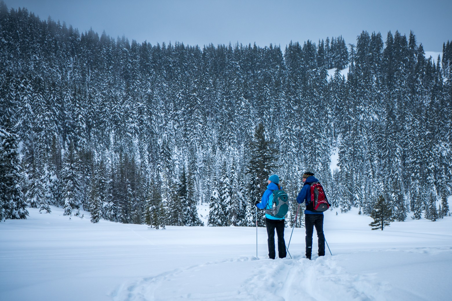 Todd Lake Winter Hikers Bend Oregon
