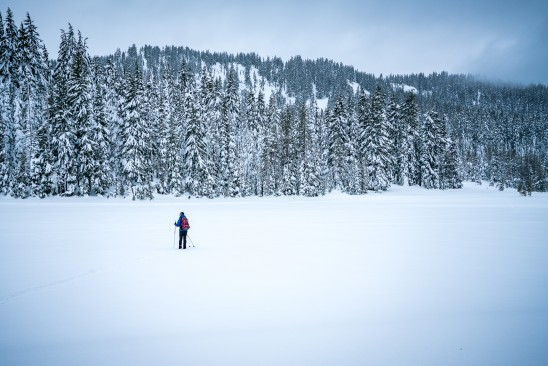 Cross Country Skiers Bend Oregon Winter