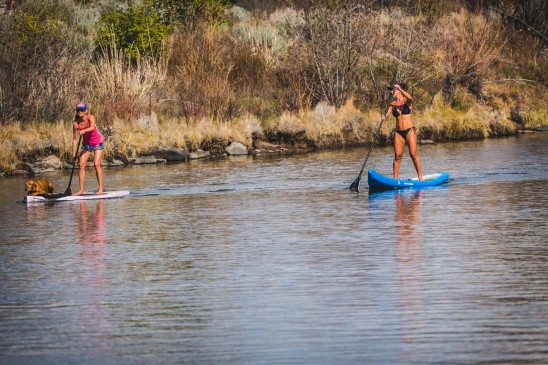 Paddle Board Deschutes River