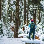 Snow Shoe Three Sisters Wilderness