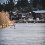 Deschutes River Paddle Boarders