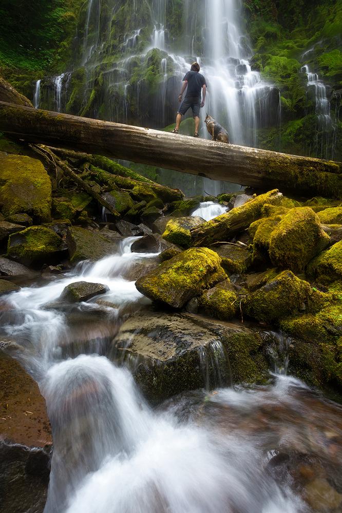 Proxy Falls Three SIsters Wilderness Oregon