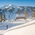 Mt Bachelor Cross Country Skier
