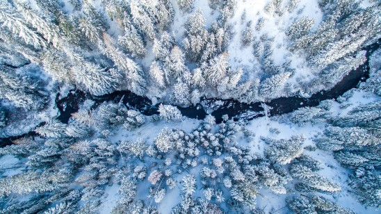 Aerial Shot of Tumalo Creek In Bend Oregon