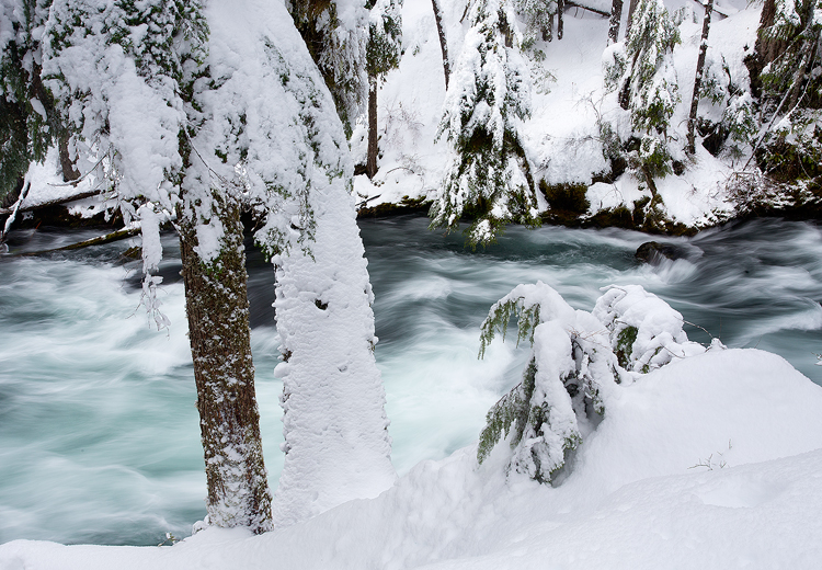 Mckenzie River Winter
