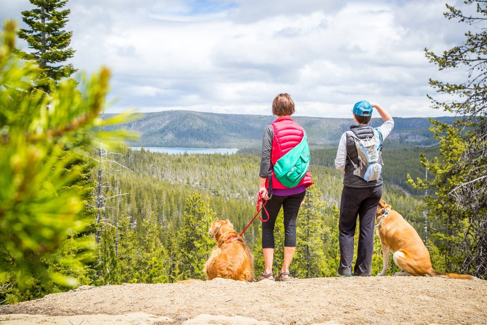Dogs & Hikers at Paulina