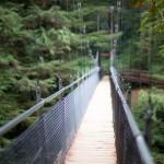 Oregon Coast Suspended Bridge 2
