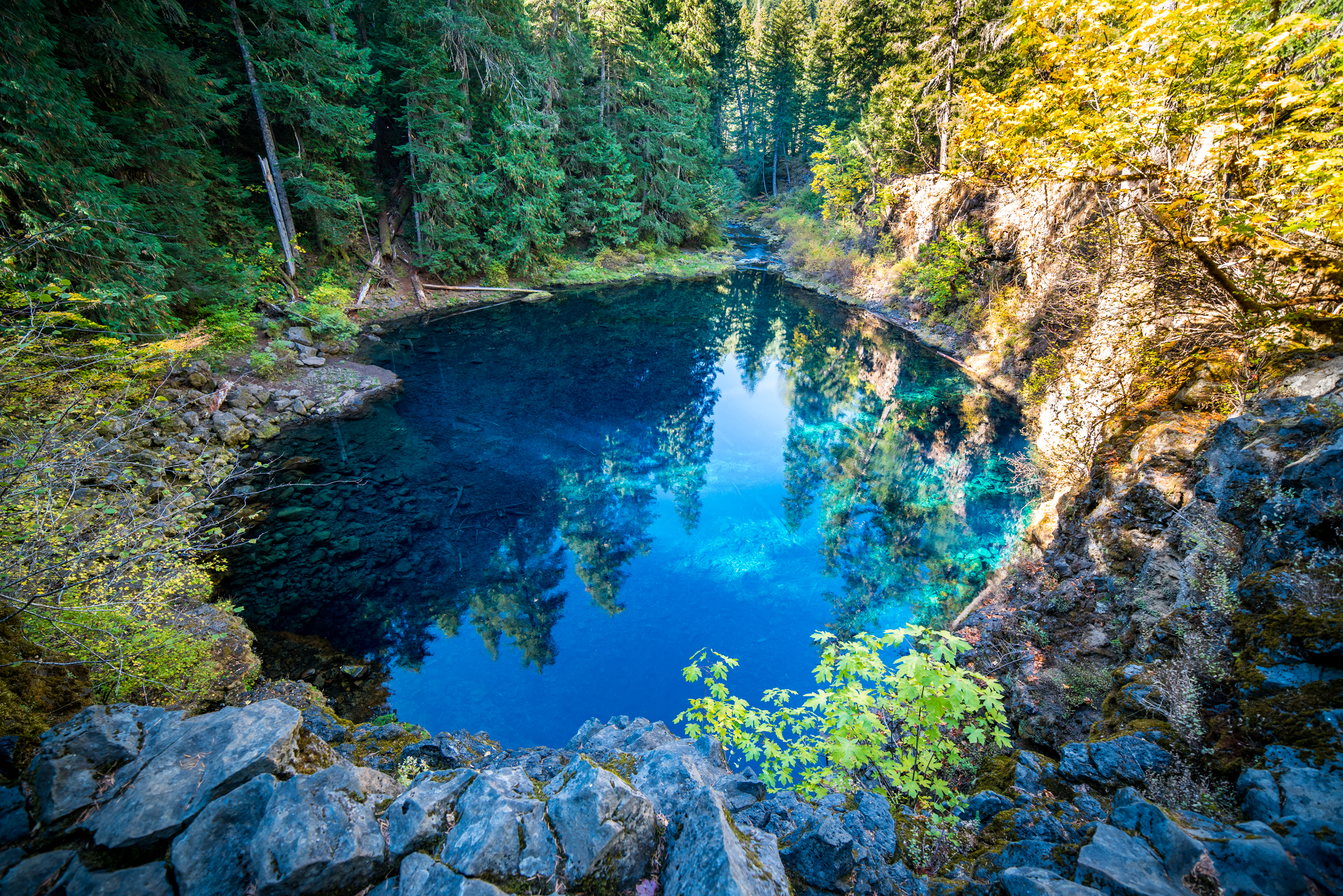Blue Pool Mckenzie River Bend Oregon Stock Photography