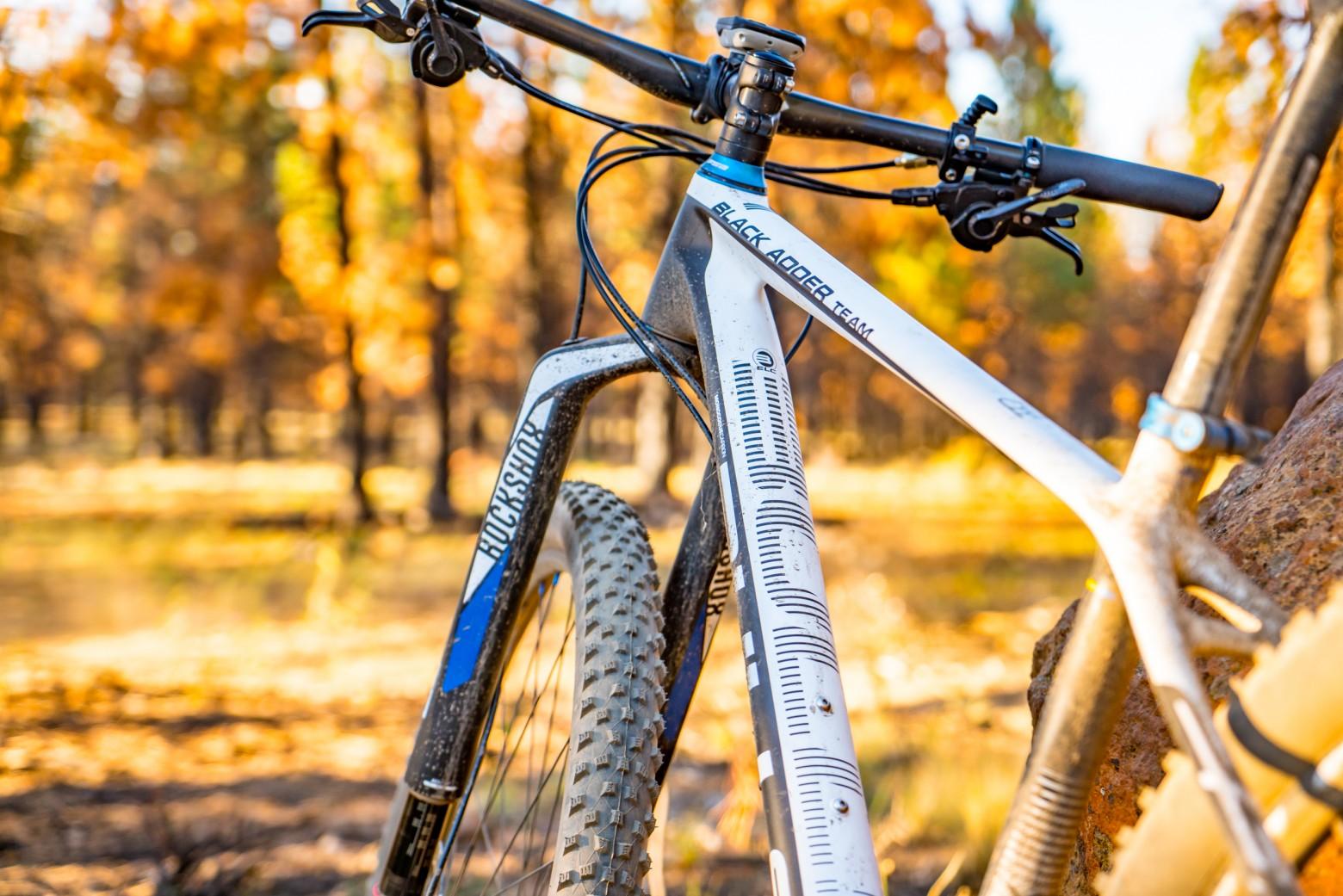 Mountain Bike Autumn