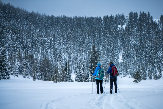 Todd Lake Winter Hikers Bend Oregon
