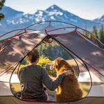 Tent Dog Human Bend Oregon