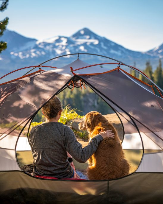 Tent Dog Human Bend Oregon
